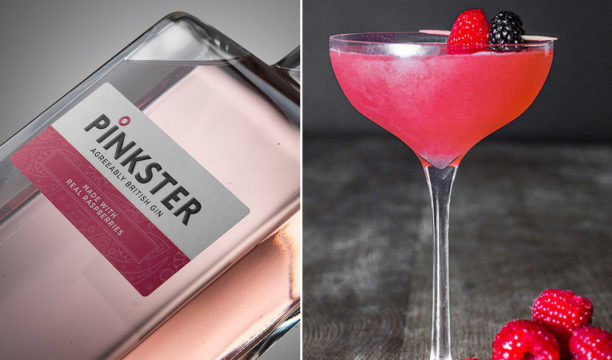 Pinkster Gin Creates the Most Perfect Pinktini Cocktail
