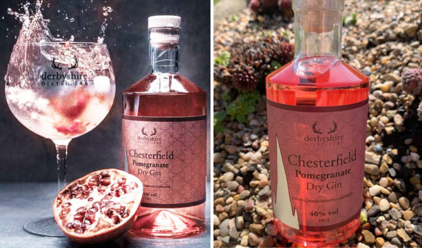 Pomegranate Gin Makes the Most Fresh and Revitalising G&T