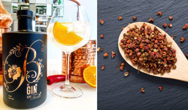 yuzu & szechuan pepper gin
