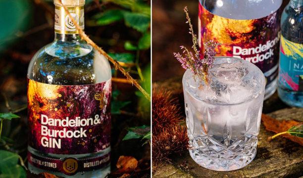 dandelion & burdock gin