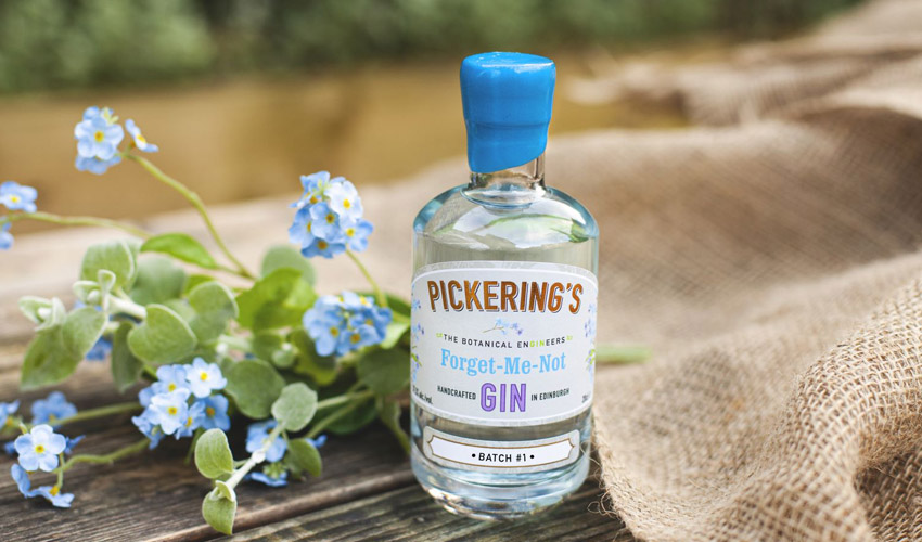 Featured Image for Forget-Me-Not Gin Is a Floral Gin to Remember