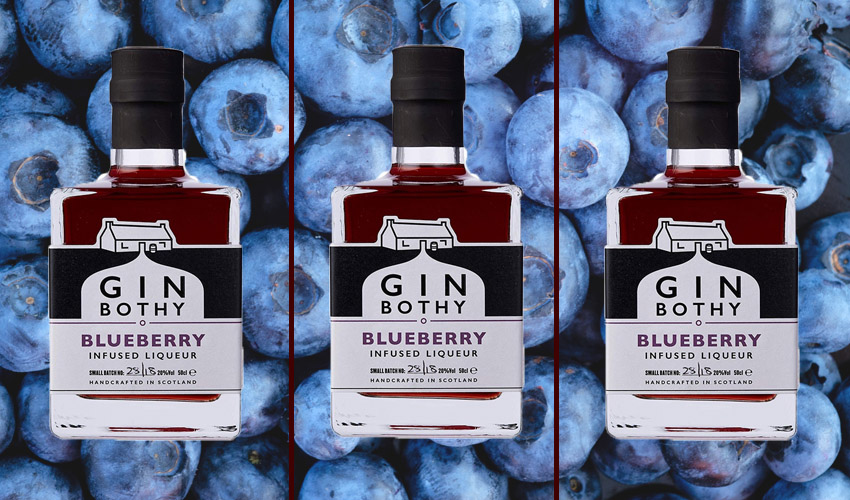 gin bothy blueberry gin liqueur