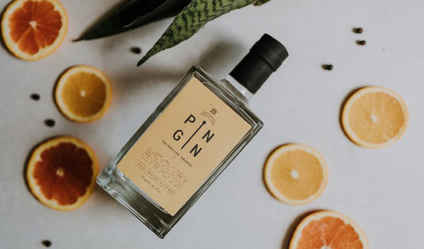 Pin Gin Valencian Orange Is a Sweet Citrus Thirst-Quencher That's Perfect for Cocktails