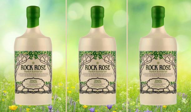 rock rose spring edition