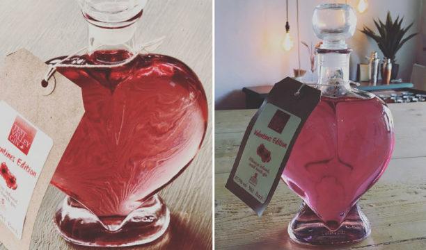 wessex spirits valentines gin