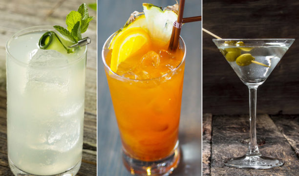 These Easy Home Made Gin Cocktails Use Only Three Ingredients and Are Perfect for Budding Baristas