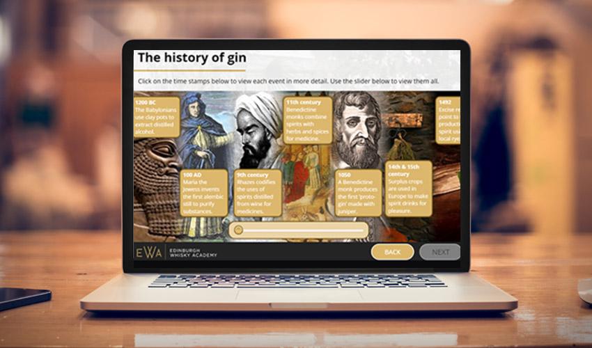 online gin school