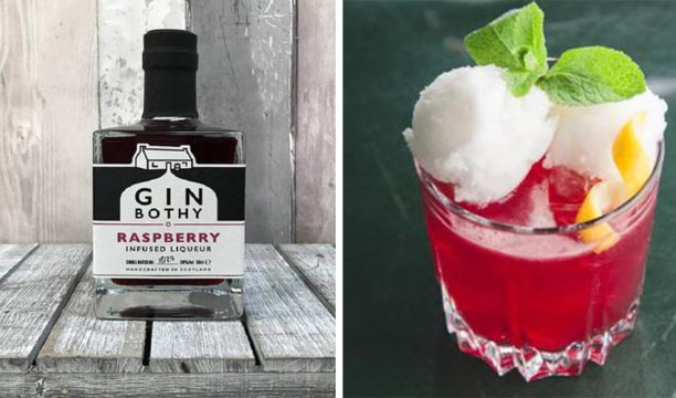 raspberry gin ice cream cocktail