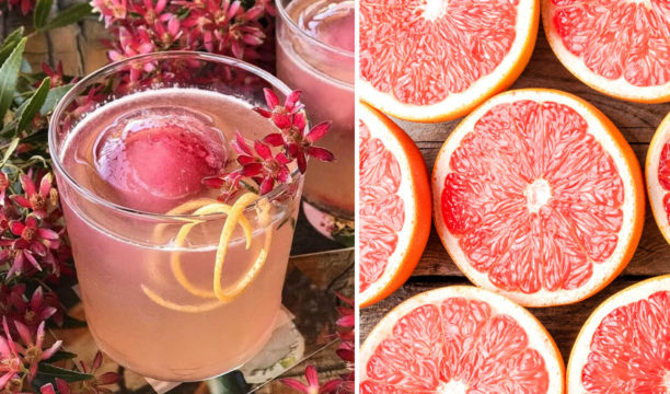 best grapefruit gin cocktail