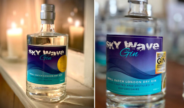 sky wave gin review