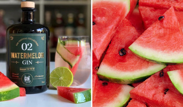 A Juicy Watermelon Gin and Tonic Is the Perfect Refreshment for a Warm Day