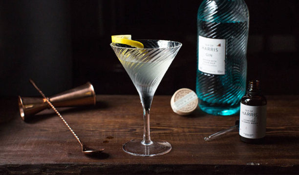 Featured Image for Here's How to Make the Perfect Gin Martini with Isle of Harris Gin for World Martini Day