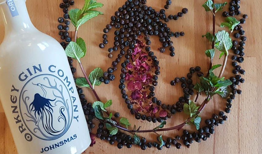 Orkney Gin Company Johnsmas review