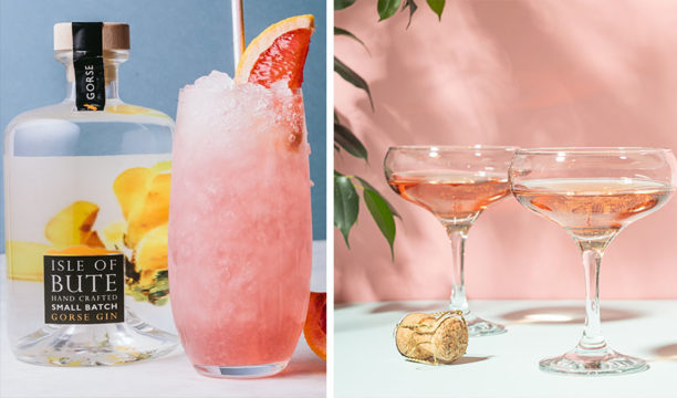 Featured Image for Rosé Wine and Gin Combine in a Summertime Match Made in Heaven