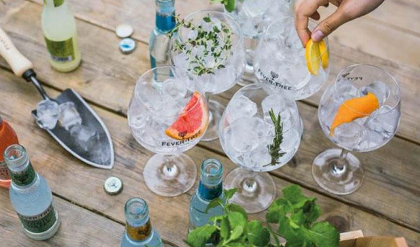 fever tree online gin & tonic festival
