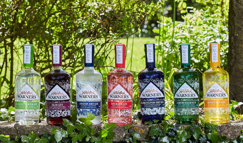 warners virtual gin experience