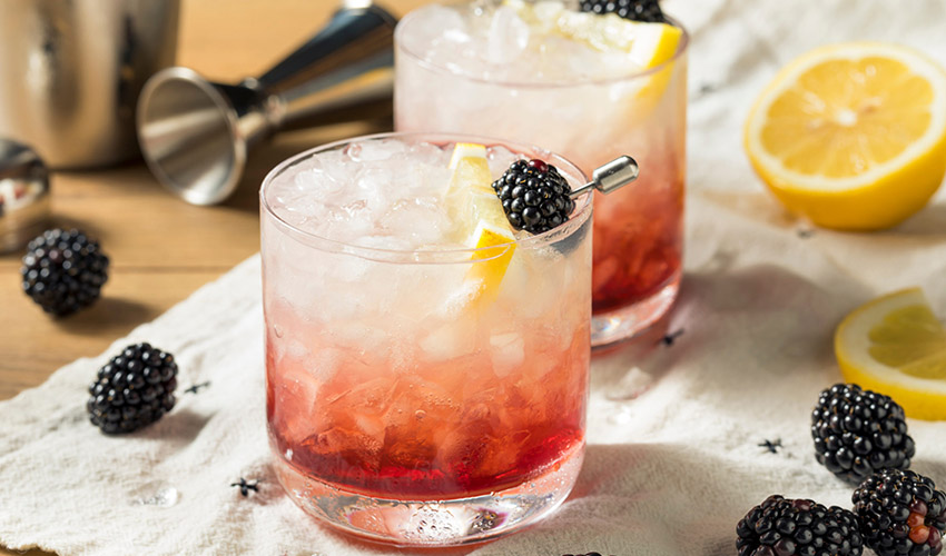 Featured Image for From Boozy Bakes to Virtual Tastings, All You Need to Celebrate World Gin Day in Style