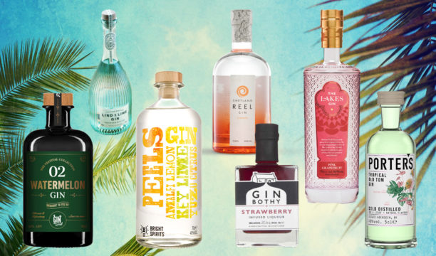 15 Best Summer Gins to Sip into the Long Hot Evenings