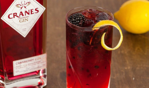 A Cranberry Gin Bramble Is a Refreshing Burst of Berry Goodness