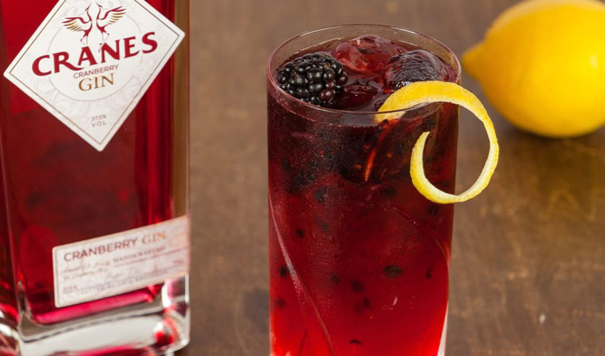 cranberry gin bramble