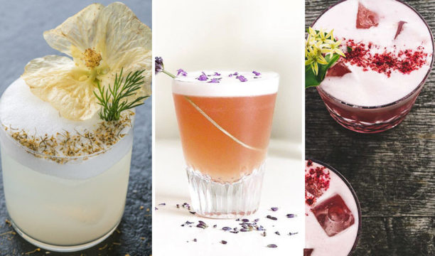 6 Best Gin Sour Cocktail Recipes