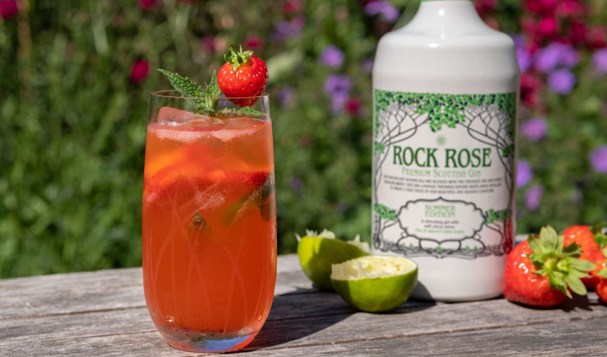 strawberry & lime gin smash