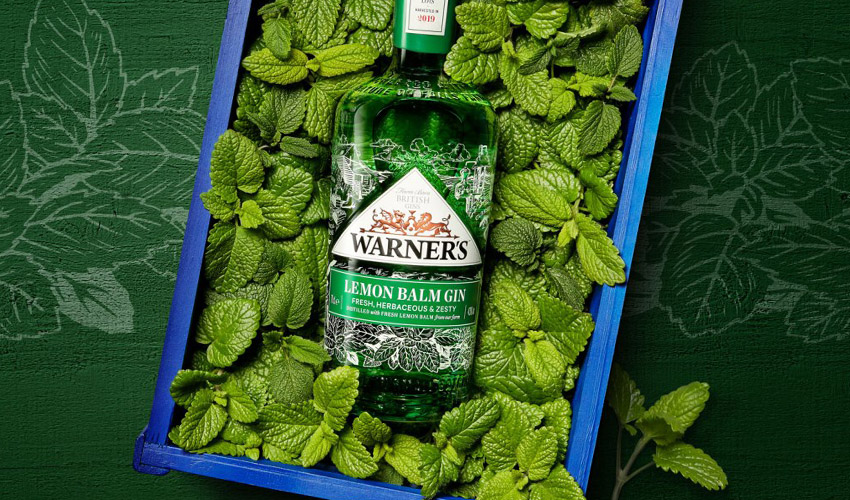 Featured Image for Review: Warner's Lemon Balm Gin
