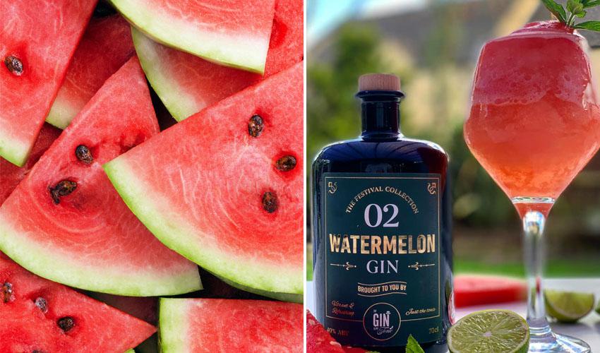 watermelon gin slushie