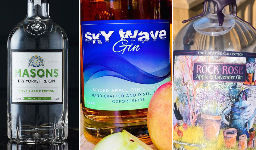 Featured Image for Where to Buy the Best Apple Gin and How to Make Your Own
