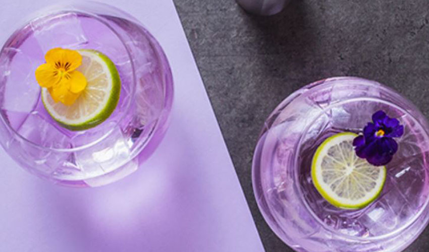 parma violet gin cocktail