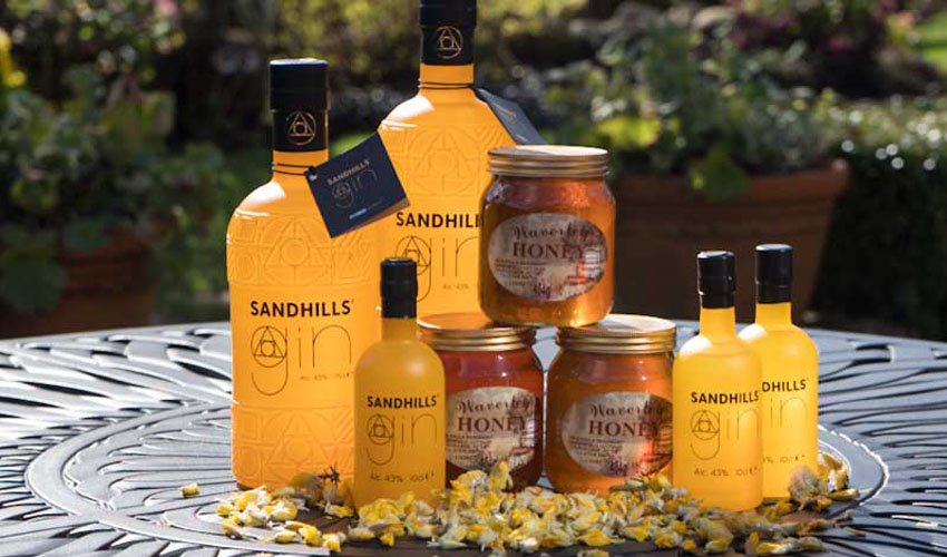 sandhills gin review