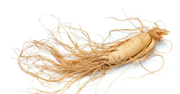 Adaptogens: The Herbs You Need To Know About