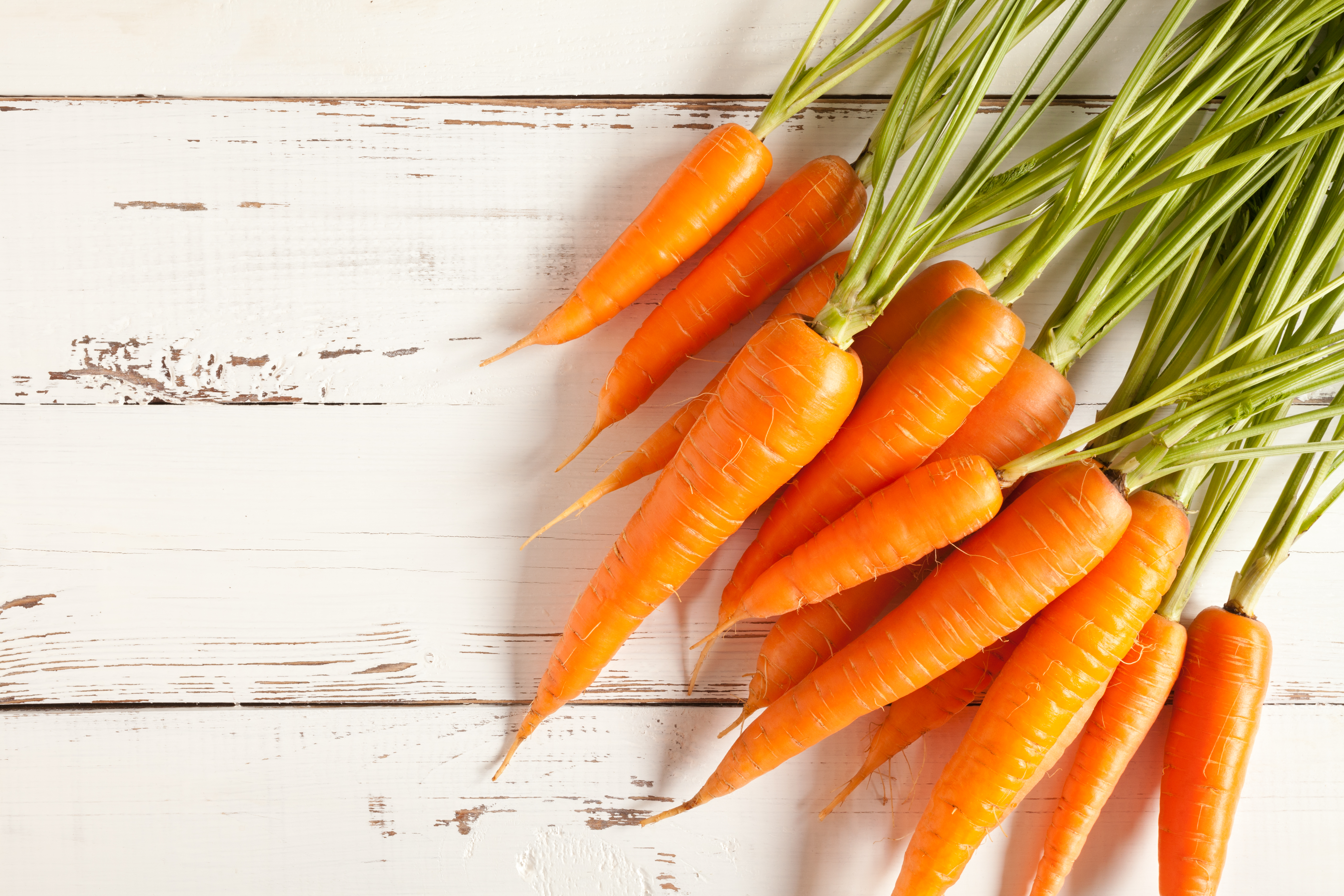 10 superfoods you need in your life