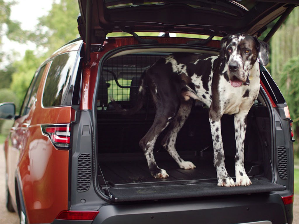 land rover dog accessories
