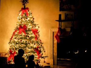 Fake or real christmas tree