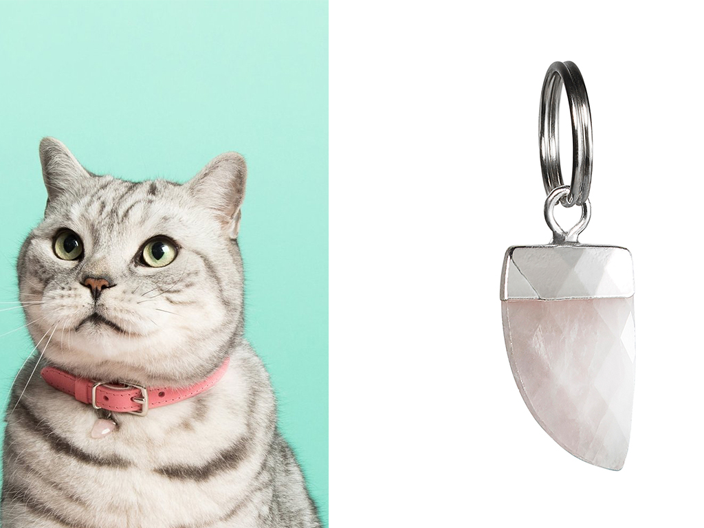 Luxury cat gifts