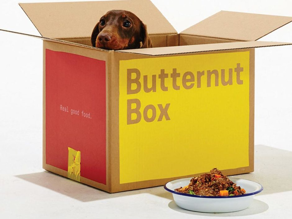 butternut box dog food subscription uk