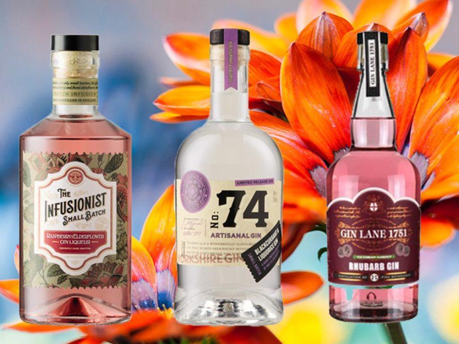 aldi new gin flavours