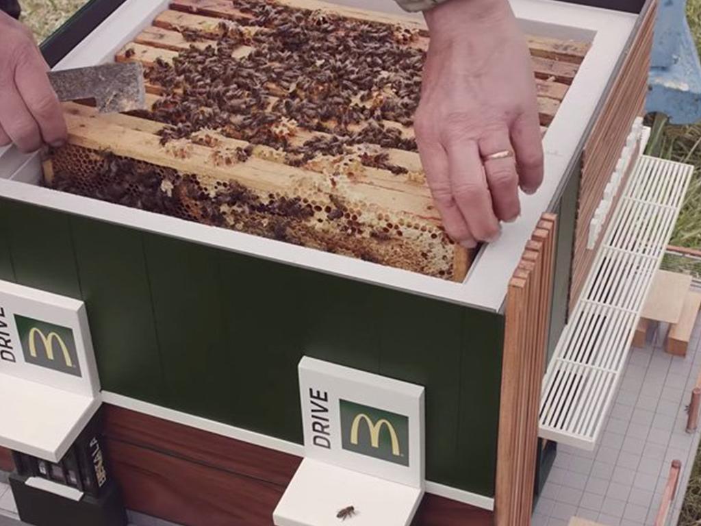 mcdonalds bee hives