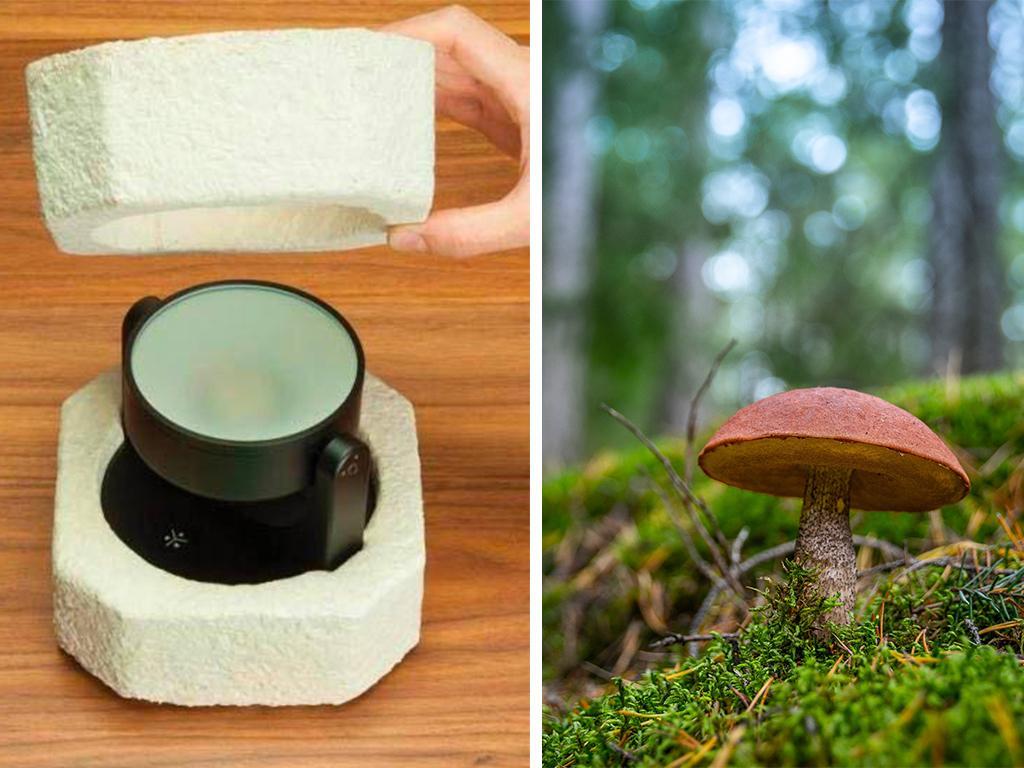 ikea fungi packaging