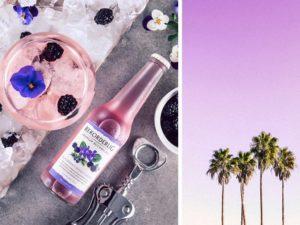 rekorderlig blackberry violet cider