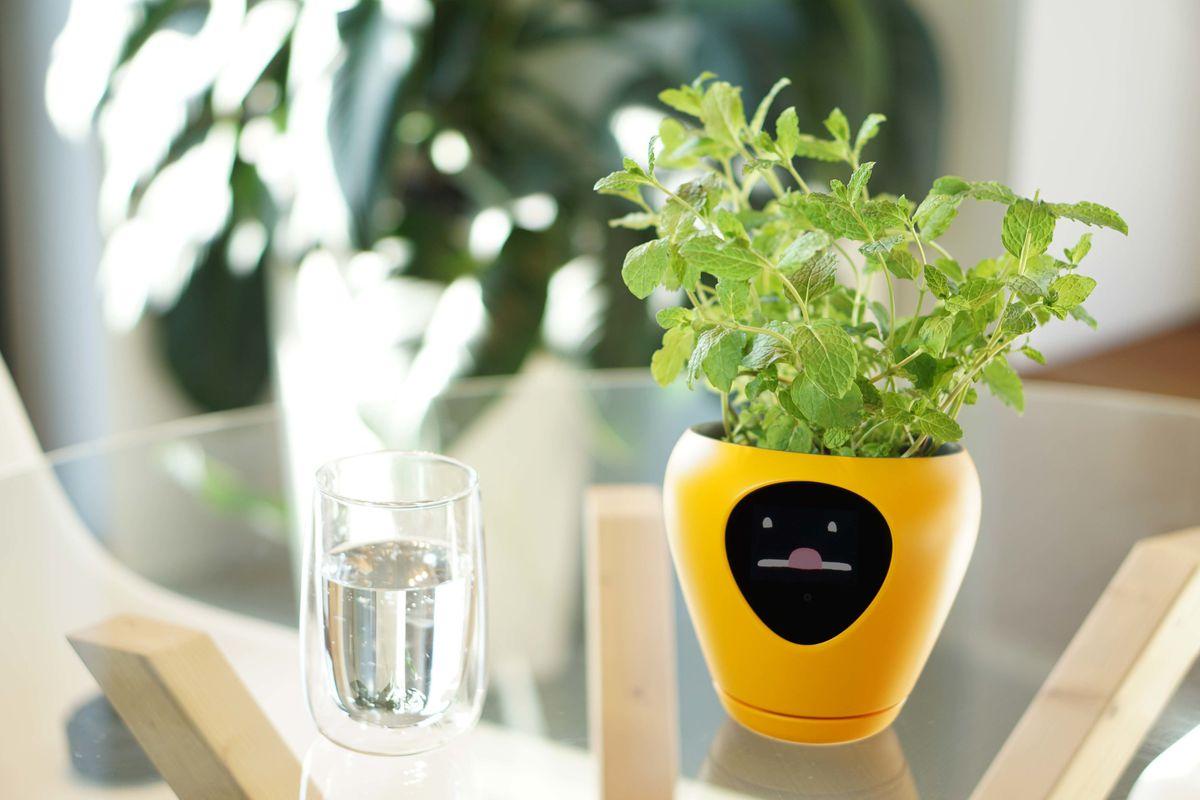 lua smart plant pot mu design