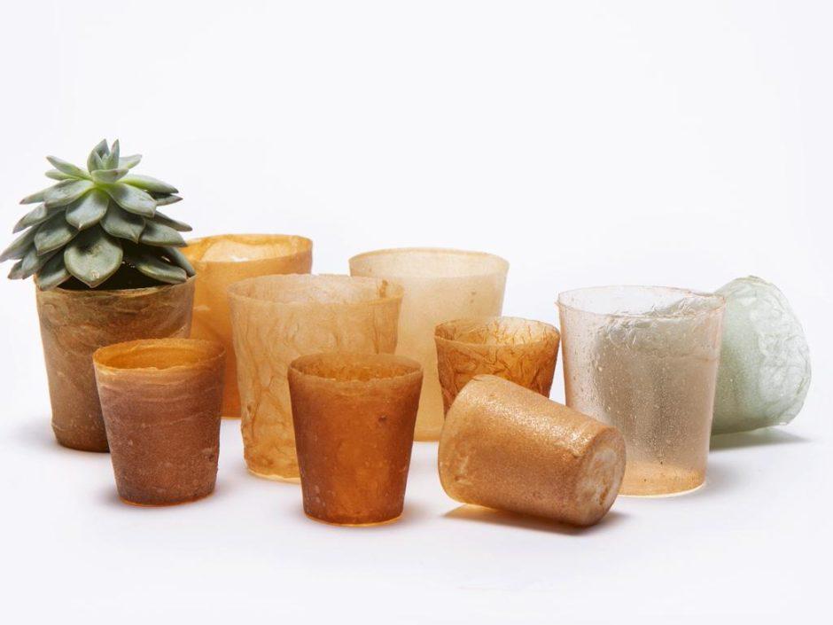 shellworks plastic alternatives