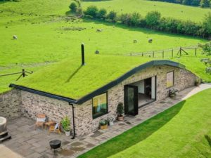 the burrow wales