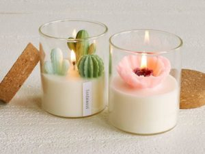 terrarium candles