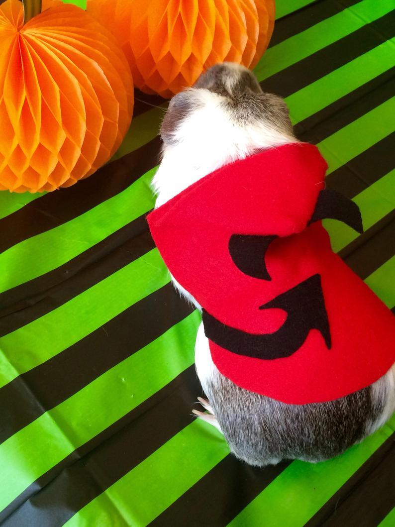 guinea pig halloween costumes uk