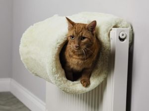 These Cat Beds Are Perfect for Helping Precious Moggies Get Cosy This Winter
