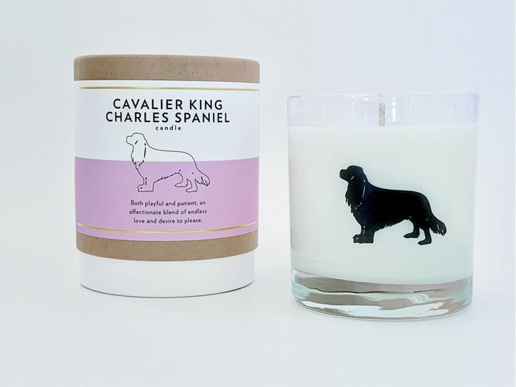 scripted fragrance dog candles