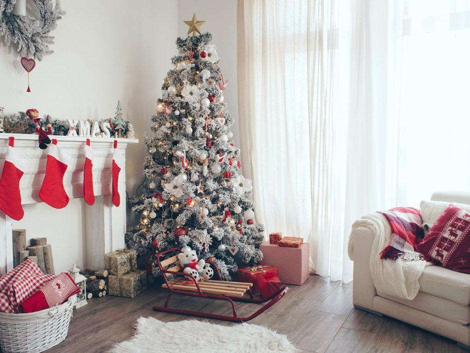 sustainable festive study 2019