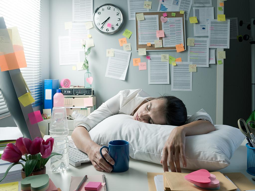 bed sos sleep study